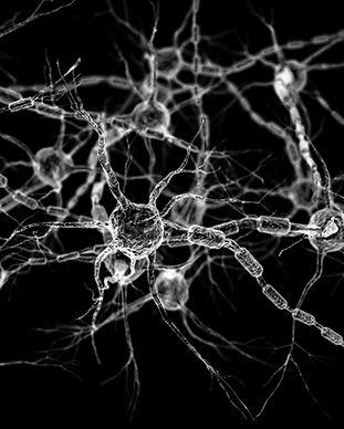 Neural network - neurons .jpg