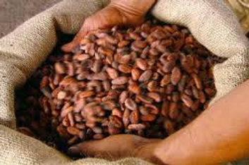 Beans - Pure Nacional - Fortunato No.4 - 940g