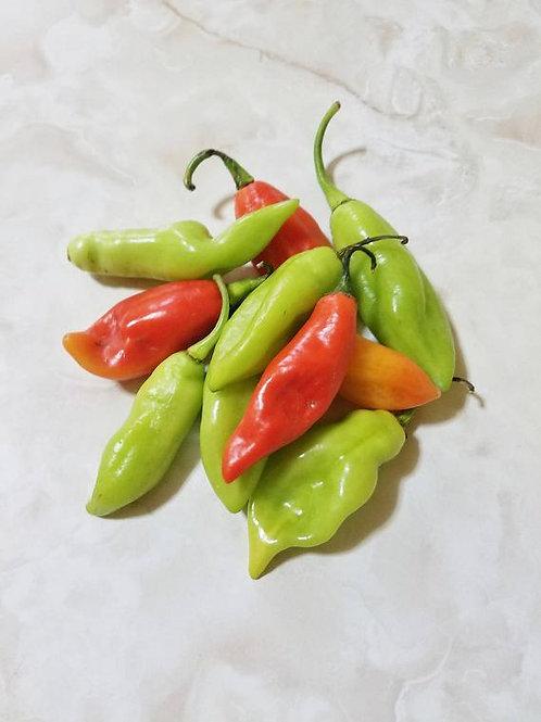 Pimentos 20 count (weedicide & pesticide free)