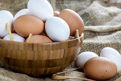 1 dozen Free Range Eggs