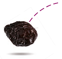 pruneaux lou prunel