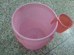 Pink Bucket - photo credit Patricia M. Kewer
