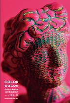 2019 colorcolor.jpg