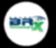 Logo REDONDA -original-BRX.png
