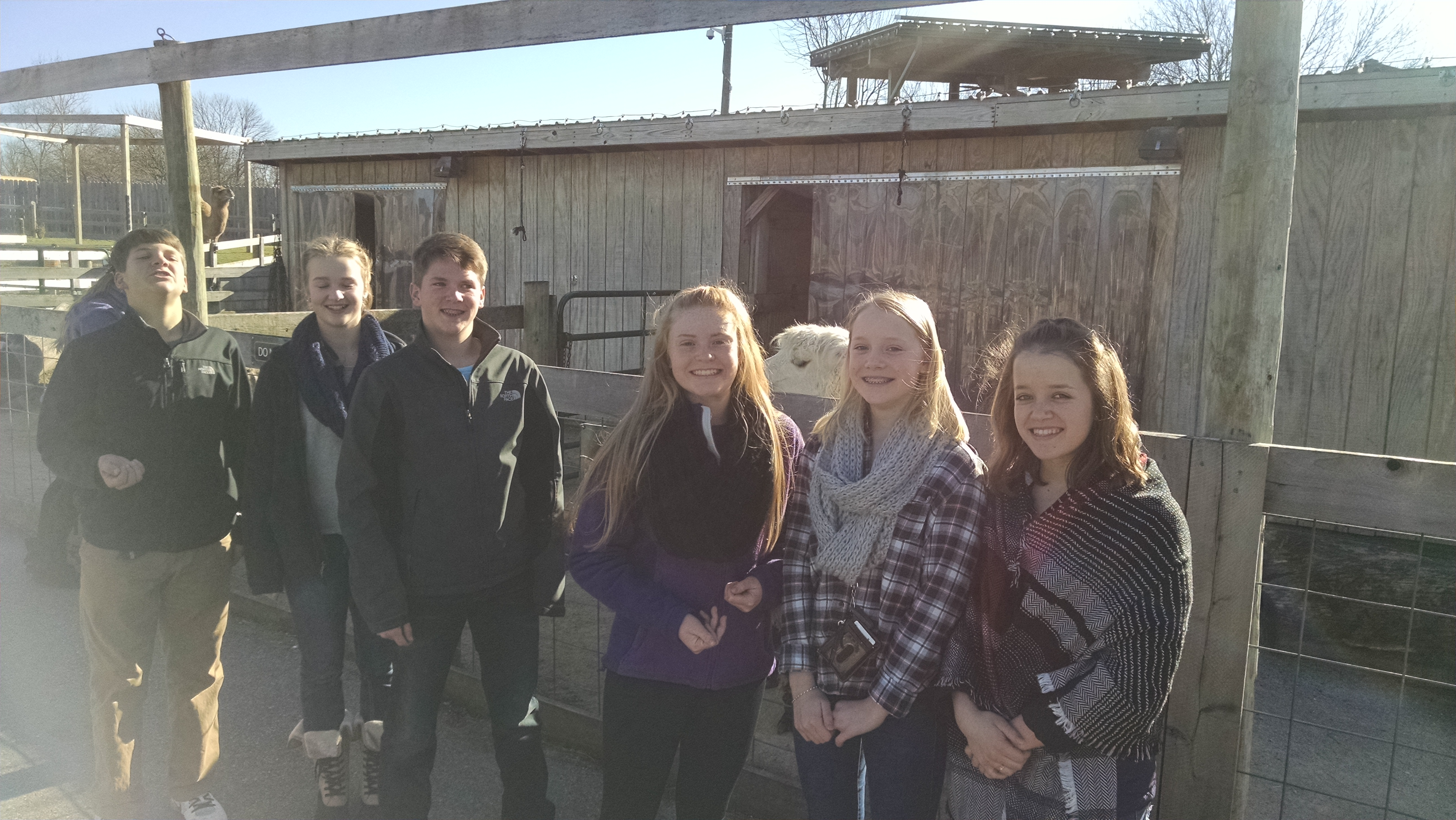Youth Group at Petting Zoo