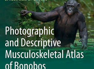 Bonobo Atlas Cover.jpg