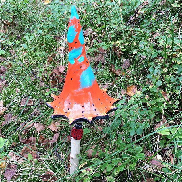 Dr Seuss's hat Shroom.jpg
