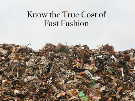 Why is Fashion so bad for the environment?