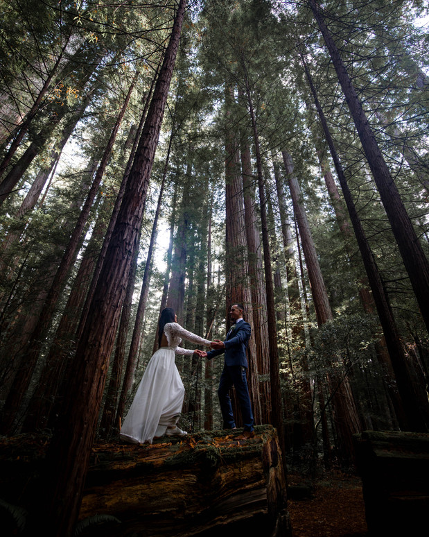 California Elopement Photography