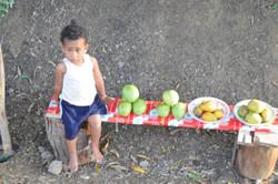 Fiji 2011 II 584