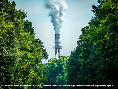The Urgenda case: human rights obligations to reduce carbon emissions