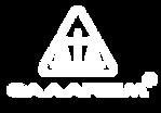 Logo_CAAAREM-BCO.png