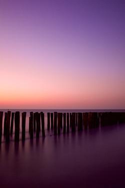Pink poles