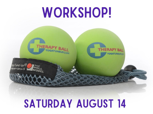 Yoga Ball Therapy Workshop