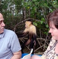 Monkeys Exploring