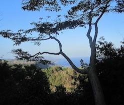 Vistas Around Montezuma