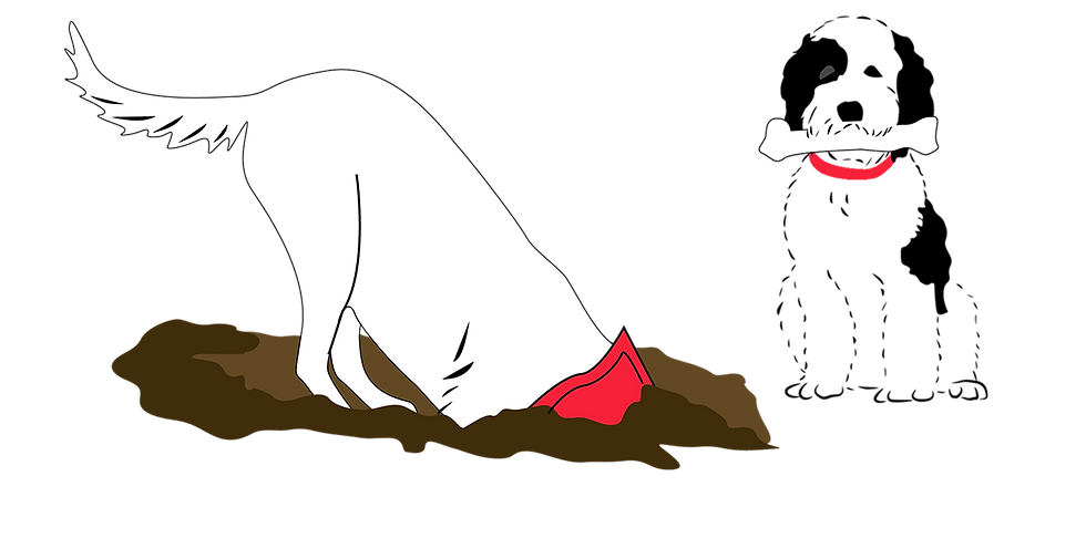 Edit_dogsketchRed.png