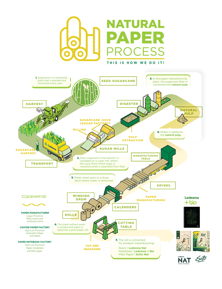 PROCESO_NATURAL(ingles).png