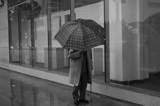Rainy LA