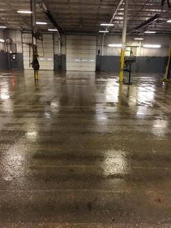 Primed Floor 2