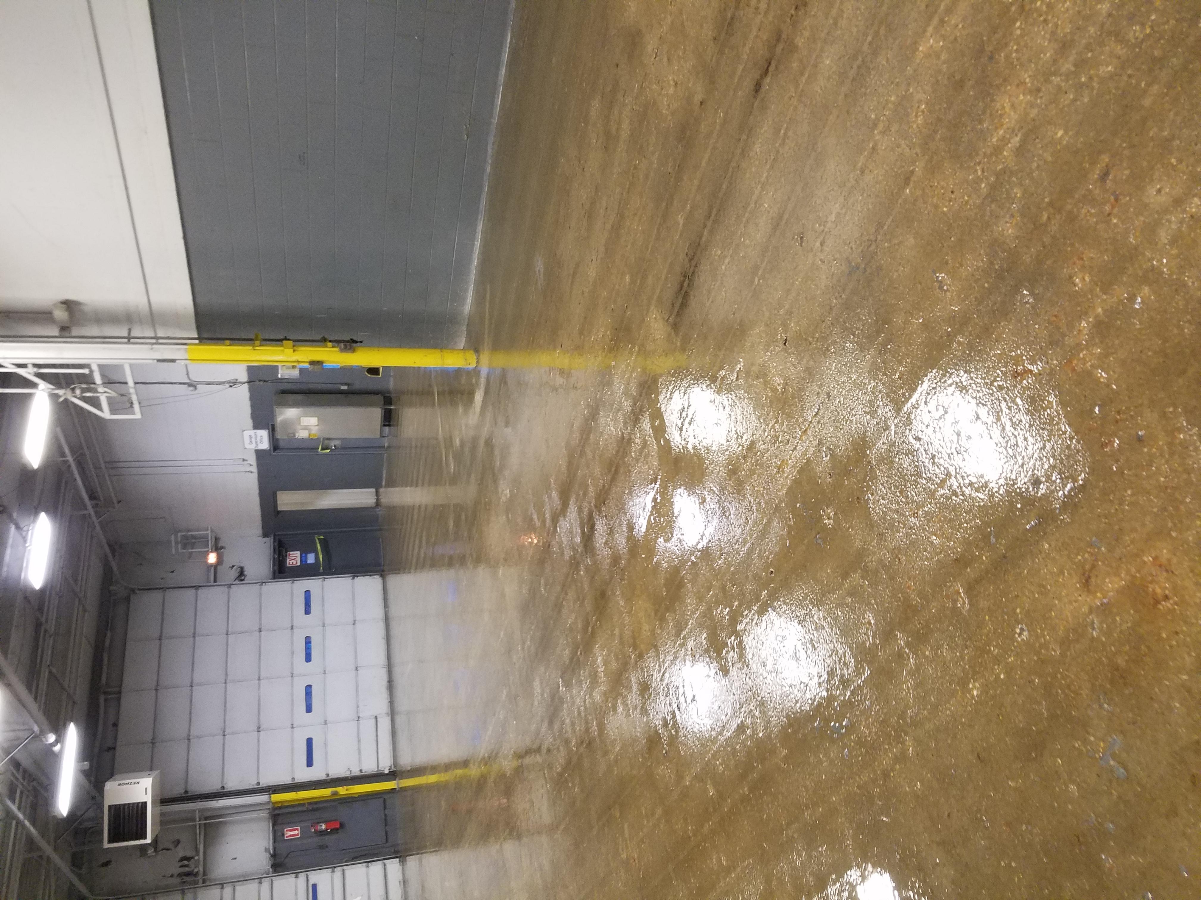 Primed Floor 1