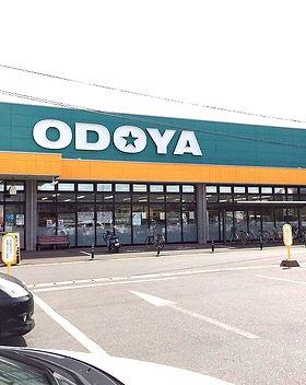 ODOYA_edited.jpg