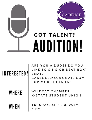 Audition 2019 flyer.png