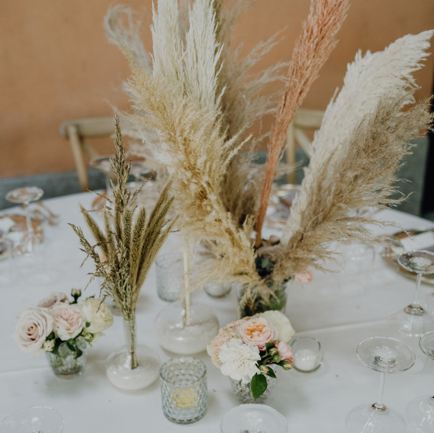 Catalina_Dejan_wedding_5542.jpg