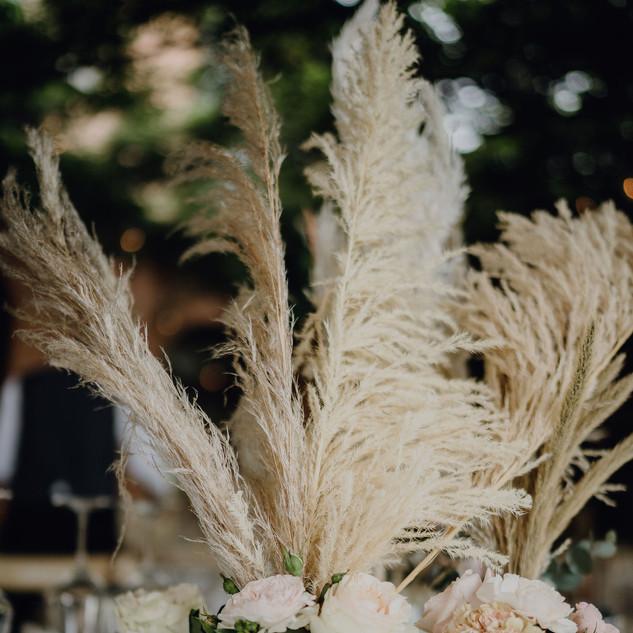 Catalina_Dejan_wedding_5575.jpg