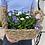 Thumbnail: Violette e Pratoline