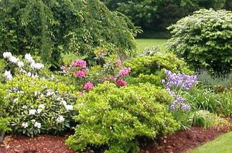Preparing for Spring Landscaping Success.