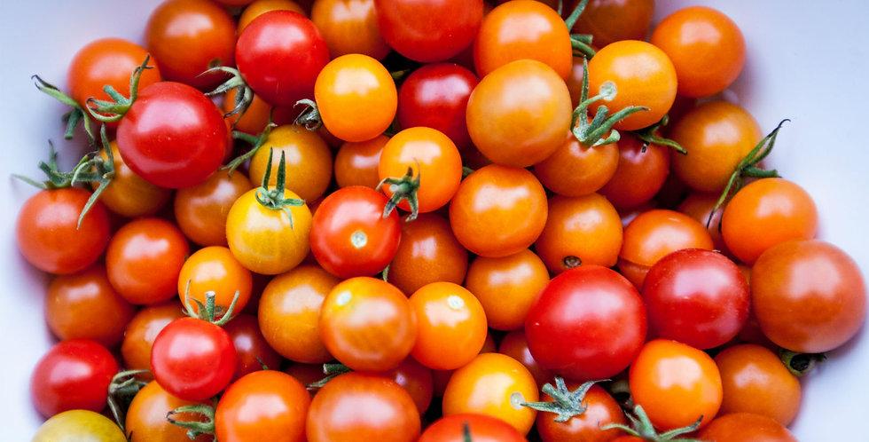 sungella cherry tomato