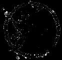 logo_transparency%2520no%2520script%2520