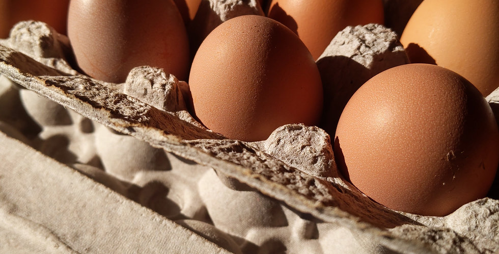 East of Eden organic eggs!