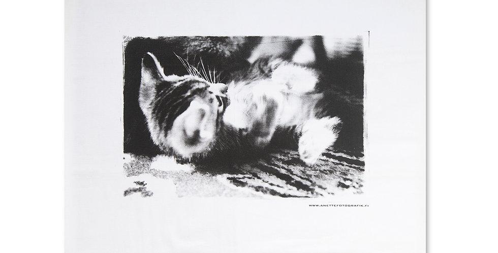 TYYNYLIINA KISSANPENTU KELLII - PILLOW CASE Lolling Kitty