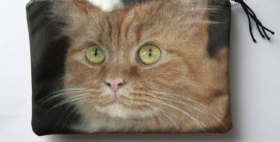 PUSSUKKA KISSA 7 - PURSE CAT 7