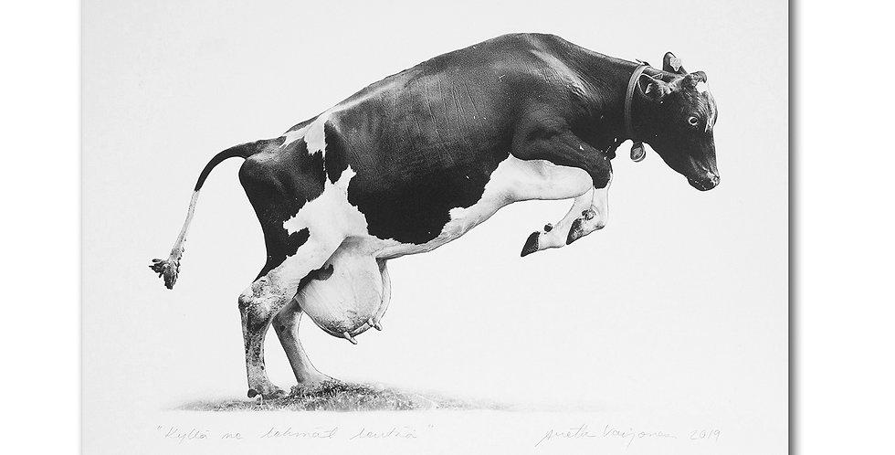 PRINTTI - LENTÄVÄ LEHMÄ - PRINT FLYING COW