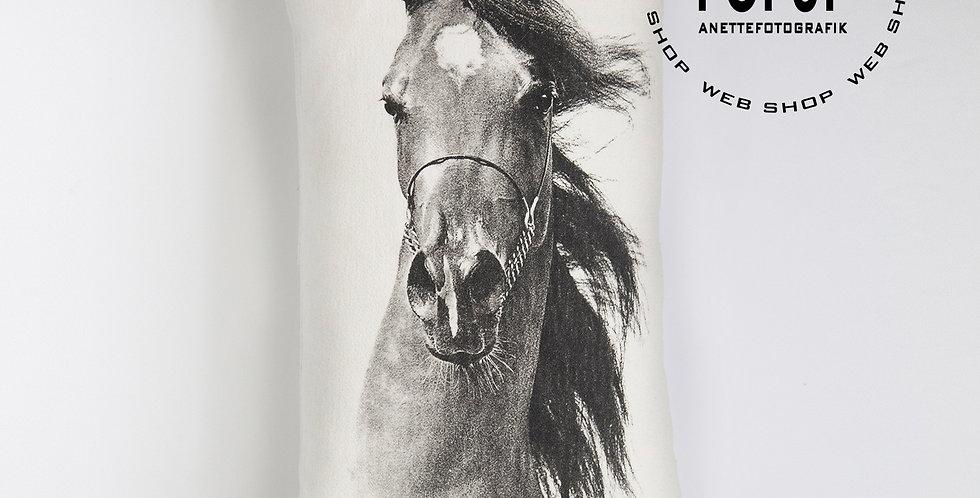TYYNYNPÄÄLLINEN ARABI - SG Wendetta - CUSHION COVER ARABIAN