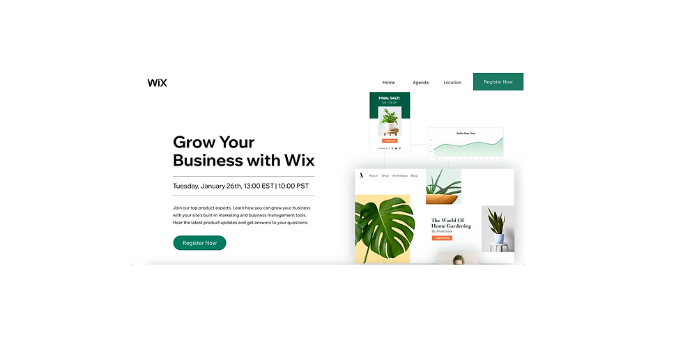Grow Your Business with Wix