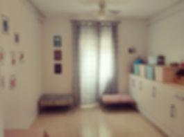 habitación_de_los_cachorros_de_border_