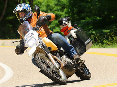 adventure-motorcycle-dogs-riding-world-m