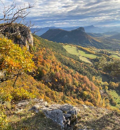 Drôme_paysage_nature.jpg