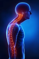 Increased-Cervical-Lordosis_blue-Incorre
