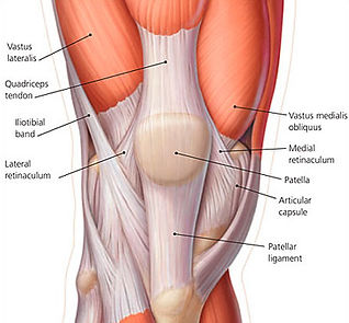 Yoga therapy for knee pain Budapest