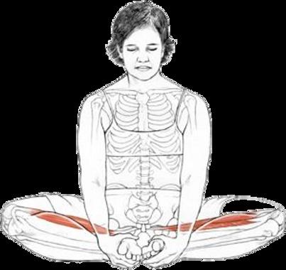 Women yoga articles