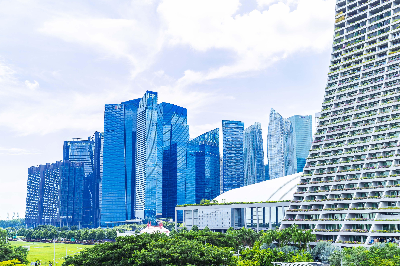 Landscape of Singapore(Forbes Japan)
