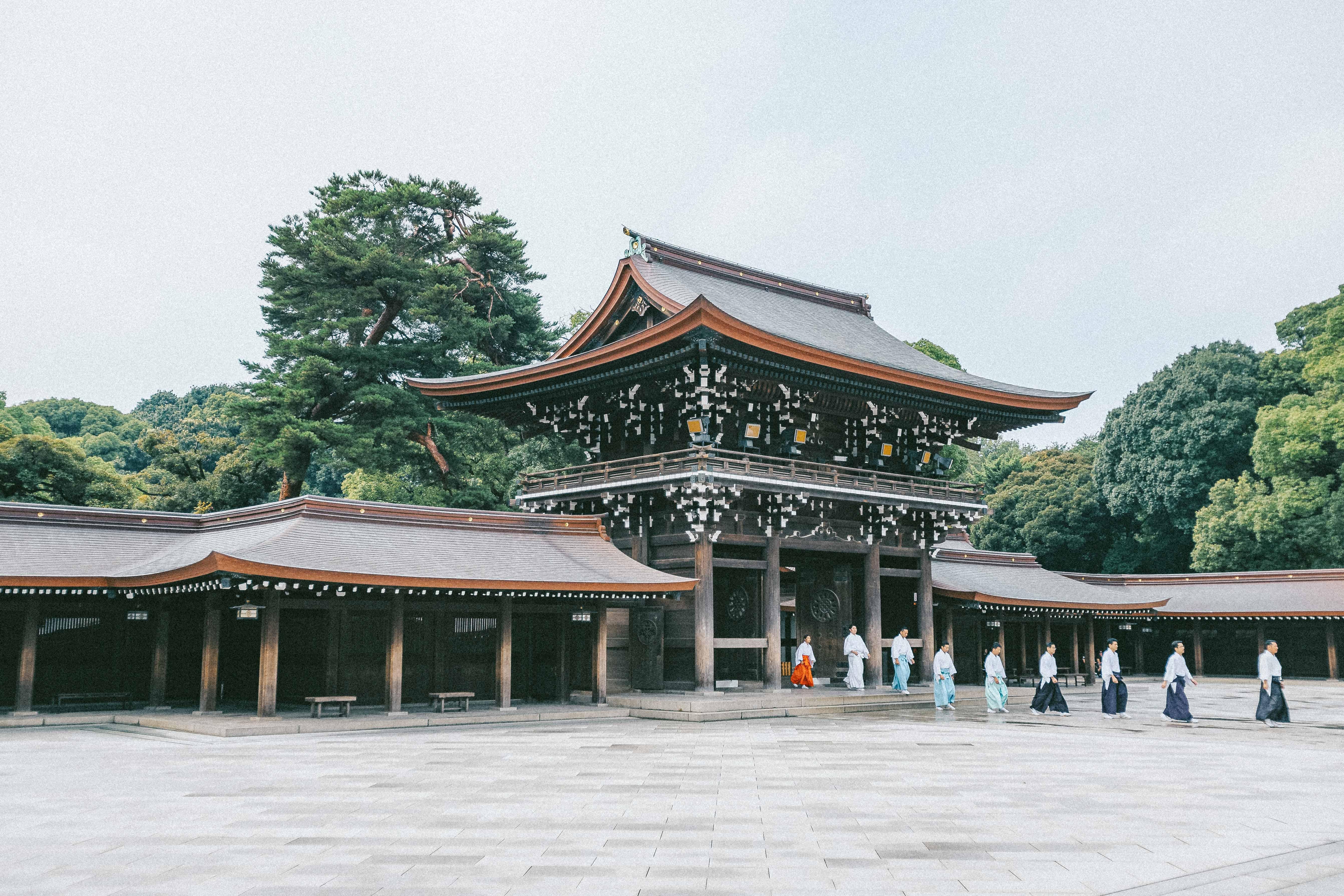 明治神宮(神宮の杜芸術祝祭)