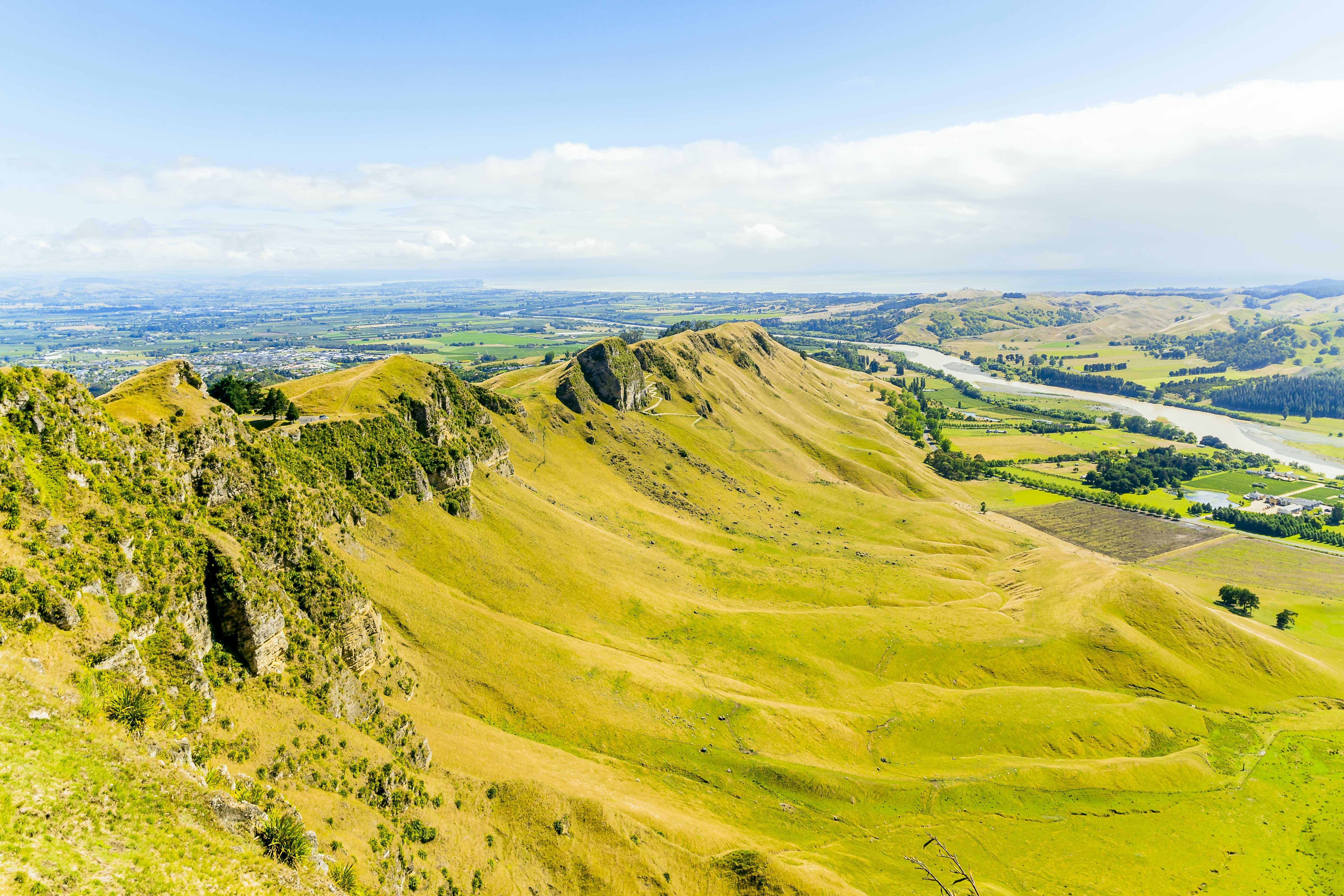 Landscape of NZ(Forbes Japan)