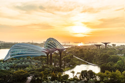 Landscape of Singapore(Forbes Japan)