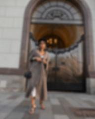 silver dress_4.jpg